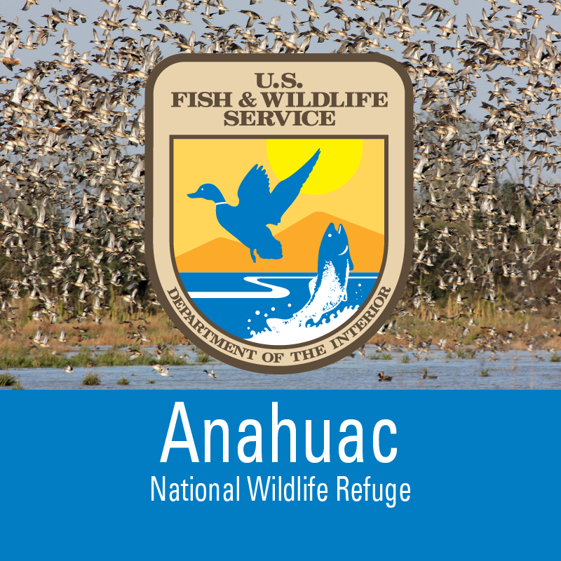 Anahuac cover image